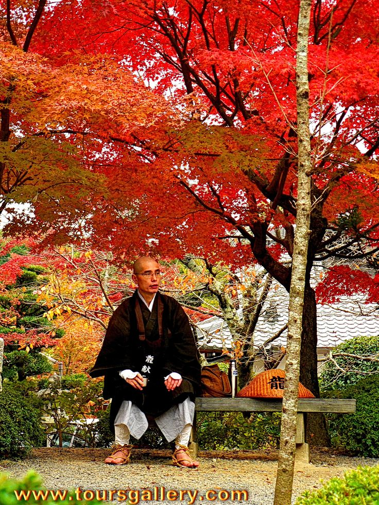 A Buddhist Monk stops for a rest under the autumn foliage during a pilgrimage in Japan. www.toursgallery.com