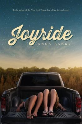 Joyride- A popular guy and a shy girl with a secret become unlikely accomplices for midnight pranking, and are soon in over their heads--with the law and with each other.