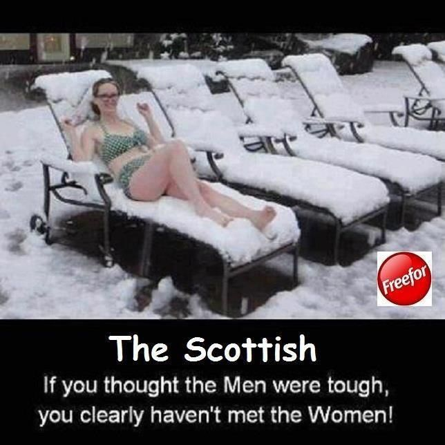 Scottish Women                                                                                                                                                     More