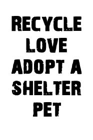 Animal Rescue Fund - Located in Pelahatchie, MS - The Mission of ARF is to provide shelter and sanctuary to abandoned, abused and neglected companion animals awaiting adoption in Mississippi, focusing on the metropolitan tri-county area.