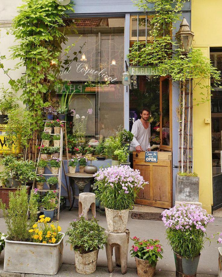 Bleuet Coquelicot Paris With Images Flower Shop Greenhouse
