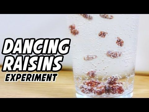 Dancing Raisins Experiment - YouTube. This was not that interesting.