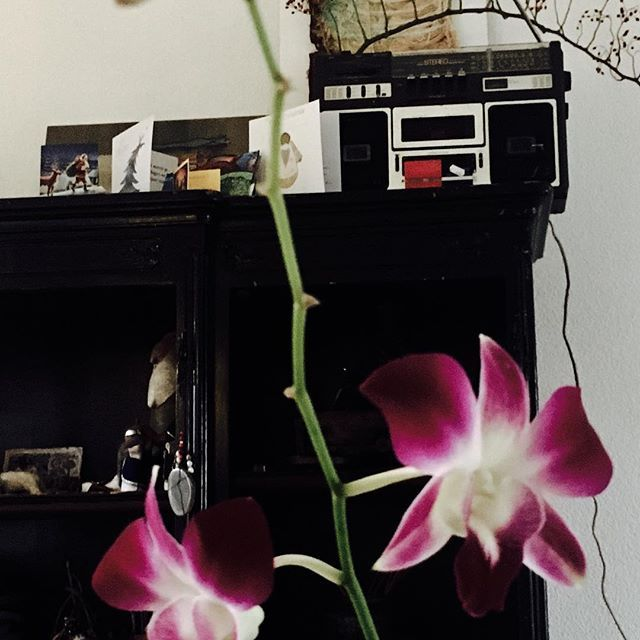 #vintage #sony #music #interior #living #soul #wild #orchid #black #closet #inspiration  #loveandlight