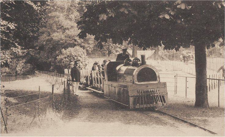 Le petit train du jardin d 39 acclimatation du bois de for Bois de boulogne jardin d acclimatation