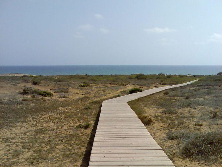 Path (Calblanque)