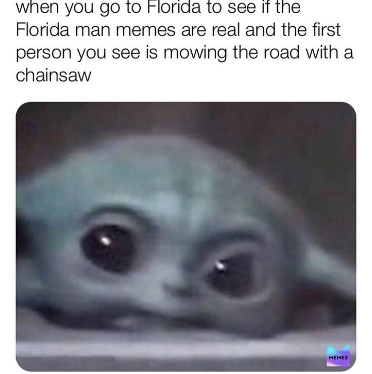 Baby yoda farts florida is for the crazies in 2020