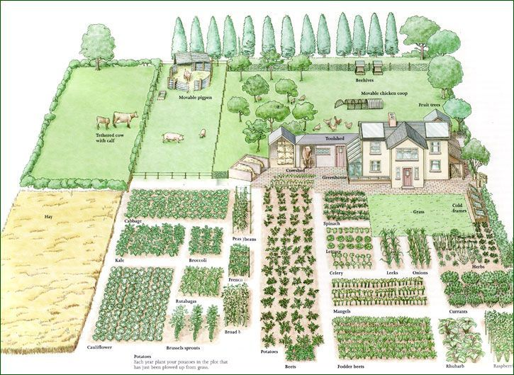 Do It Yourself Home Design: 1-acre Homestead Can Be Divided Into Land For Raising Livestock And A Garden For