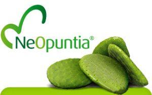 NeOpuntia - Le NeOpuntia (nopal) Nom latin : Opuntia ficus-indica. Nom commun : NeOpuntia feuille de cactus NeOpuntia ® (nopal) propriétés minceur Le Neopuntia ® (nopal) est l'ingrédient santé le plus innovant (récompensée par le trophée d'argent HIE 2004), il aspire et retient les graisses présentes dans l'... http://www.sveneol.com/wp-content/uploads/2015/03/NeOpuntia-300x188.jpg - Par cafevert sur Café vert minceur et nopal Sveneol     http://www.sveneol.