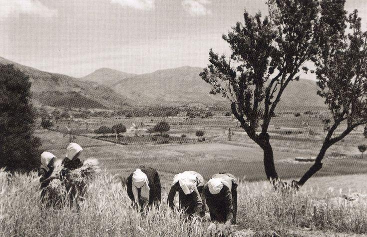 Elli (Greek: Έλλη Σουγιουλτζόγλου-Σεραϊδάρη) b.1899 - d.1998 (better known as Nelly's) was a Greek female photographer: Σφακιανοί, 1939