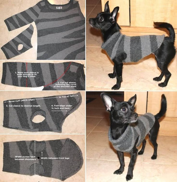 Dog Sweater made from old sweater sleeve