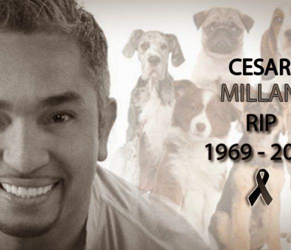Cesar Millan death hoax expressed on Twitter