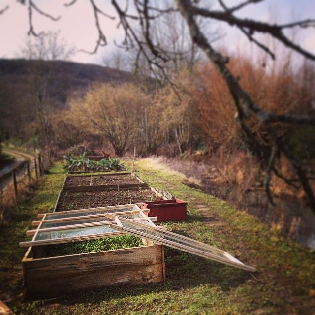 A little project to help speed up the arrival of spring. #cold frame #garden