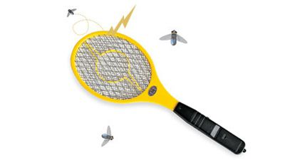how to get rid of flies and mosquitoes outside