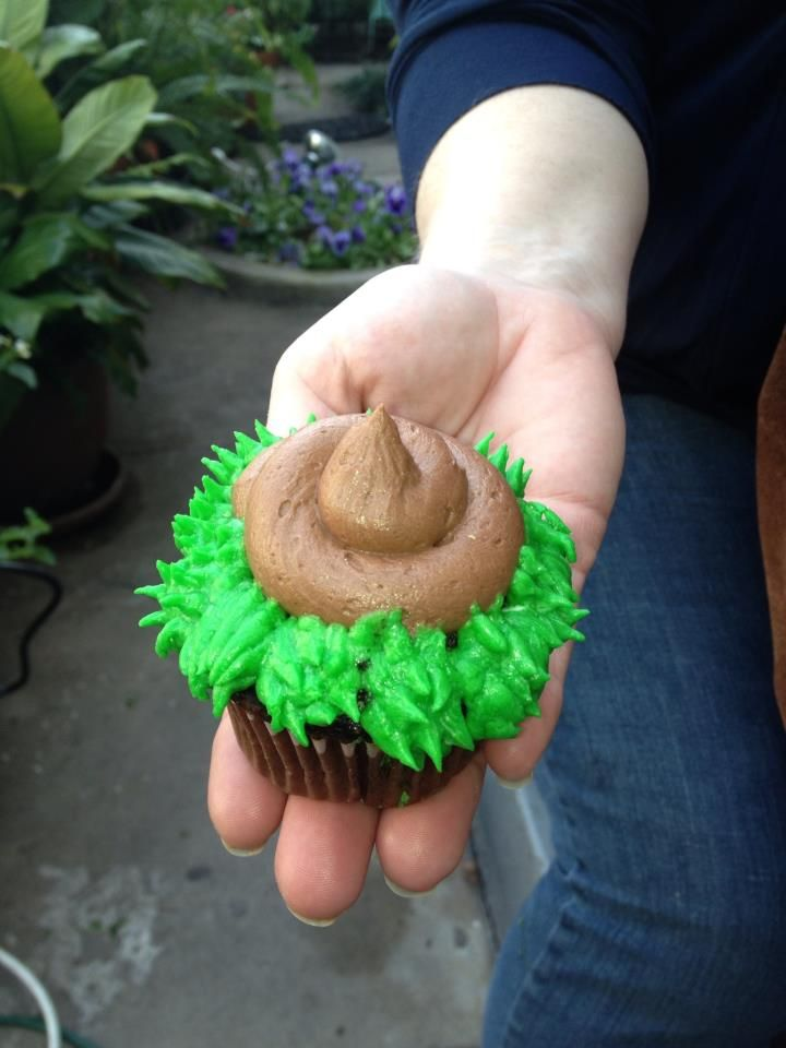 Dog Poop Cupcakes... Appetizing haha-Ch