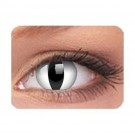 Lentilles de contact cosmétiques Oeil de Vipère