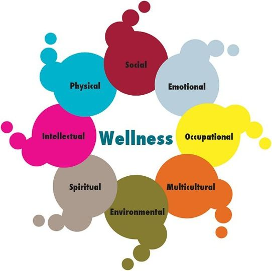 Google Health: 17 Best Images About Wellness Coaching On Pinterest