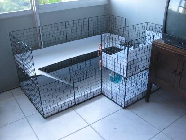 C c cage 3x4 two level bridge ramp hammocks for How to clean guinea pig cages