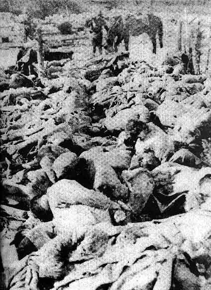 the rape of nanking essay The nanking massacre the rape of nanking was a tragic time in chinese history this event will never be forgotten by the people in the once capital of china.
