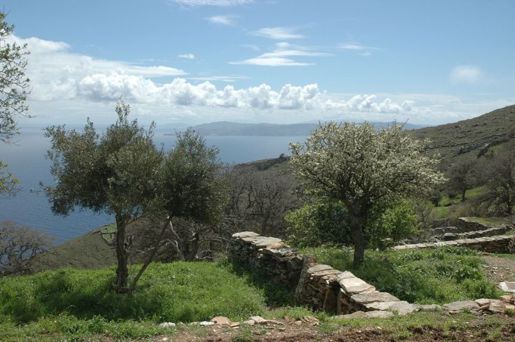 A view to the Aegean from the croft.