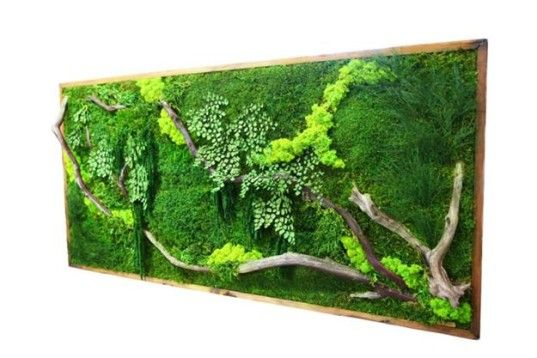 """Artisan Moss' zero-maintenance living walls are beautiful and lightweight """"plant paintings"""" that can last for decades."""