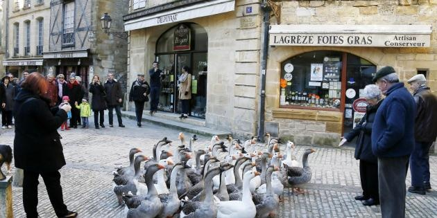 780 gourmands au Sarlat Fest'oie
