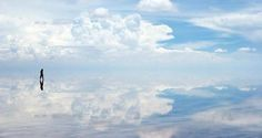 どう考えてもこの世のものとは思えない、だけど正真正銘地球上に存在している絶景25選をお届け。 1. ラップランド(フィンランド) 2. ウユニ塩湖(ボリビア) 3. モラヴィア(チェコ) 4. リッセのチューリップ畑(オランダ) 5. アイスランド 6. メア・アイランド海軍造船所(カリフォルニア州ヴァレーホ
