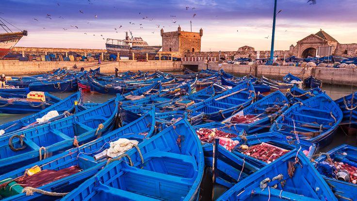 El bonito puerto de Esauira, en Marruecos