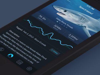 Shark Tracker App