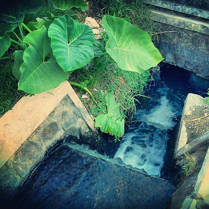 Road To Sewer, Wlingi, East Java