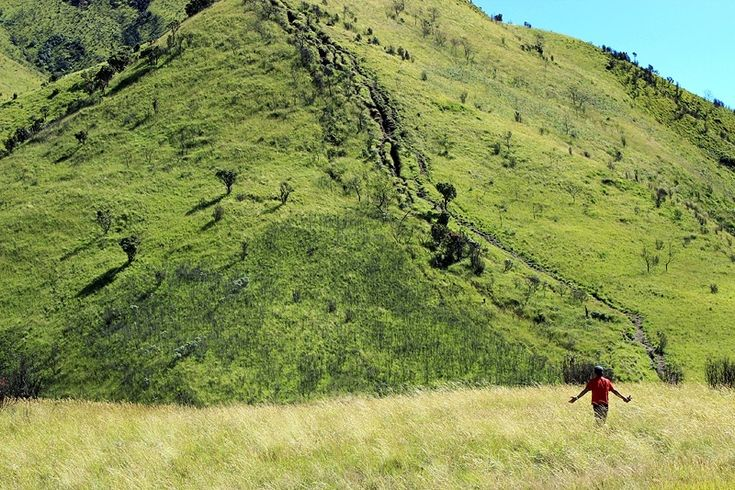 Kami sedang mendaki Merbabu setinggi 3142 mdpl yang dikenal sebagai gunung tujuh puncak via Selo. Benar sekali, trek pendakian gunung ini dihiasi dengan puncak-puncak bayangan yang memberikan harapan palsu.