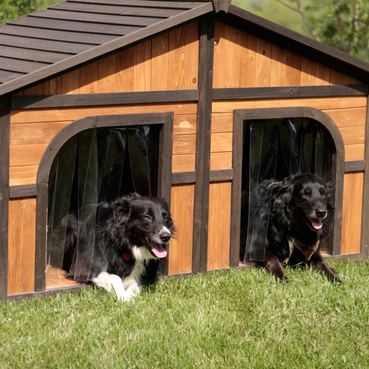 Boomer & George Duplex Dog House with Heater & FREE Doors - Spacious enough for two large dogs, or one extra-large dog, this Boomer & George Duplex Dog House with Heater & FREE Doors is not only...