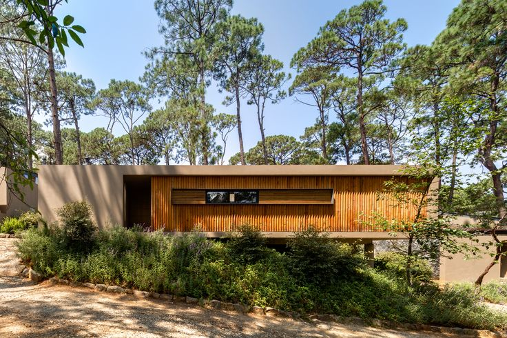 Gallery of Five Houses / Weber Arquitectos - 4