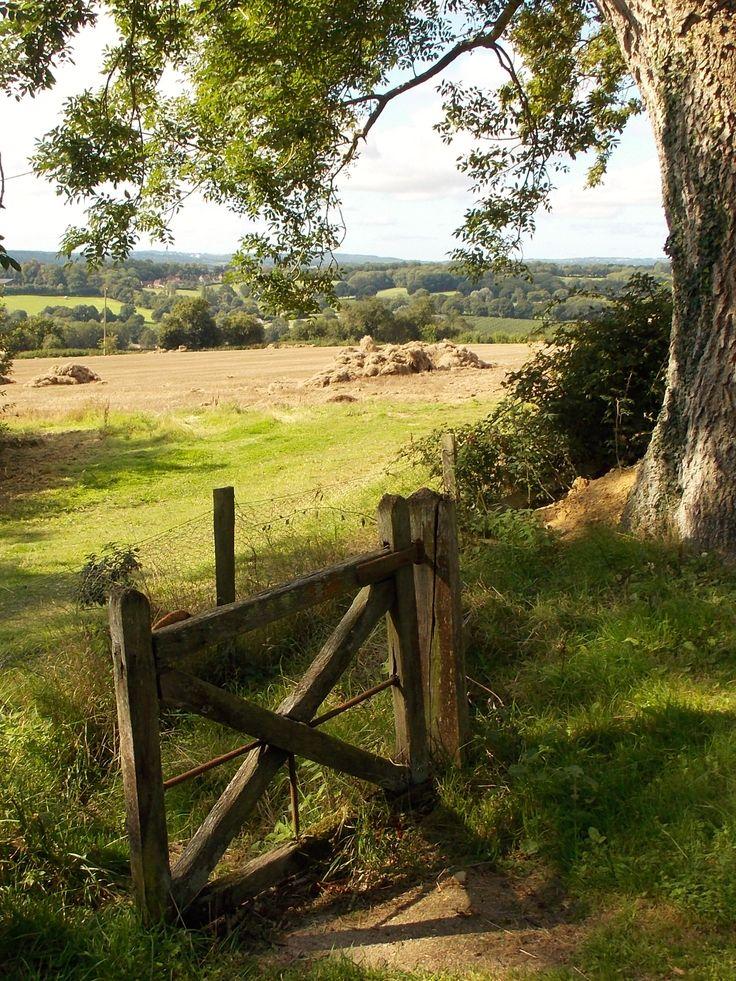 Sandhurst in Kent. England, by B Lowe