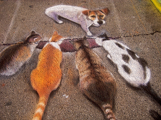 Sidewalk Art by Phong Nguyen, via Flickr