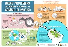 Resultado de imagen para infografia sobre las areas protegidas en el peru