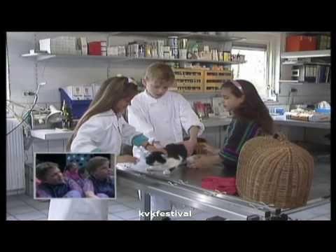 lied: De dierenarts van Kinderen voor kinderen