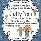 FREE Mini Close Read Unit on Jellyfish!  The article is written on 3 different levels of text and vocabulary complexity.  The differentiation is done for you!  Grades 1-3