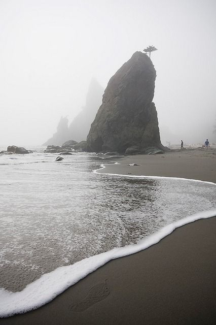 A wave rolls up below a large sea stack at Rialto Beach, Olympic National Park, Washington | Ethan Welty