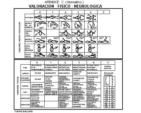 NOM-007-1993-SSA2  Actualmente está en vigor La Norma Oficial Mexicana NOM-007-SSA2-1993, Atención de la mujer durante el embarazo, parto y puerperio y del recién nacido. Criterios y procedimientos para la prestación del servicio, ella incluye varias de las recomendaciones de la OMS para la atención del parto.