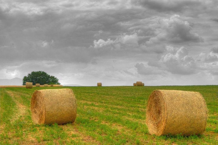 The fields https://www.flickr.com/photos/ioarvanit/19215502726/