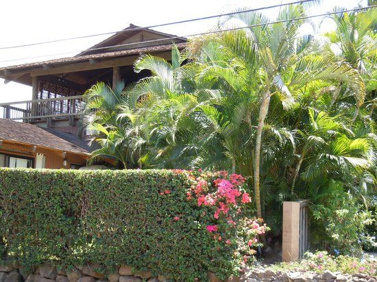 Book What a Wonderful World Bed and Breakfast, Maui on TripAdvisor: See 380 traveler reviews, 171 candid photos, and great deals for What a Wonderful World Bed and Breakfast, ranked #2 of 16 B&Bs / inns in Maui and rated 4.5 of 5 at TripAdvisor.