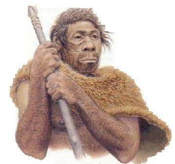 El hombre de Neandertal (Homo neanderthalensis u Homo sapiens neanderthalensis) es una especie extinta del género Homo que habitó Europa y partes de Asia occidental desde hace 230 000 hasta 28 000 años atrás, durante el Pleistoceno medio y superior y culturalmente integrada en el Paleolítico medio. El examen de restos antiguos hallados en las cuevas de Châtelperron, en Francia, podrían indicar que convivió con el hombre de Cromañón, primeros hombres modernos en Europa.