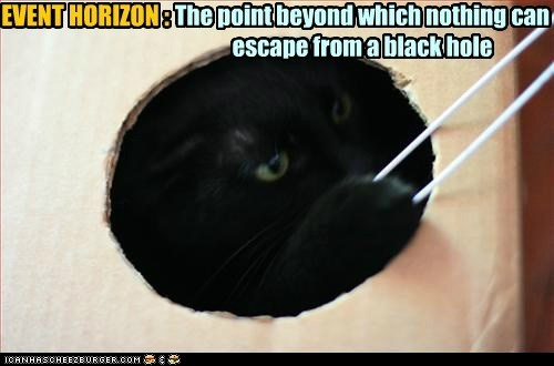 EVENT HORIZON | Cats, Places and We