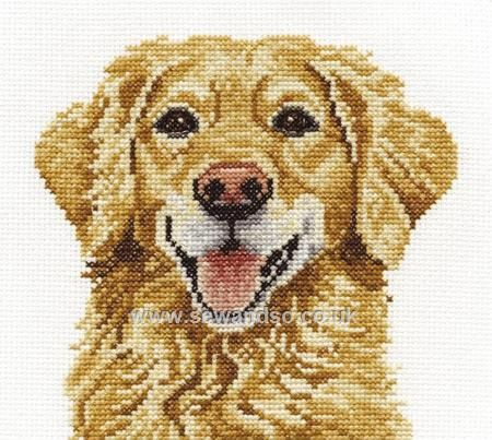 Shop online for Golden Retriever Cross Stitch Kit at sewandso.co.uk. Browse our great range of cross stitch and needlecraft products, in stock, with great prices and fast delivery.