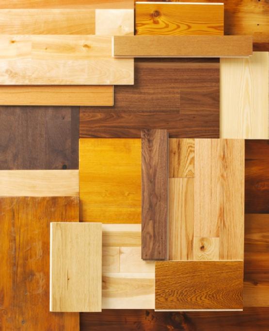 Common Wood Species Used in Flooring Types of hardwood