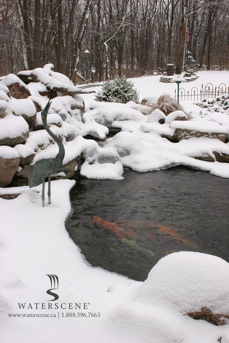 Our water features continue to look stunning in the winter.