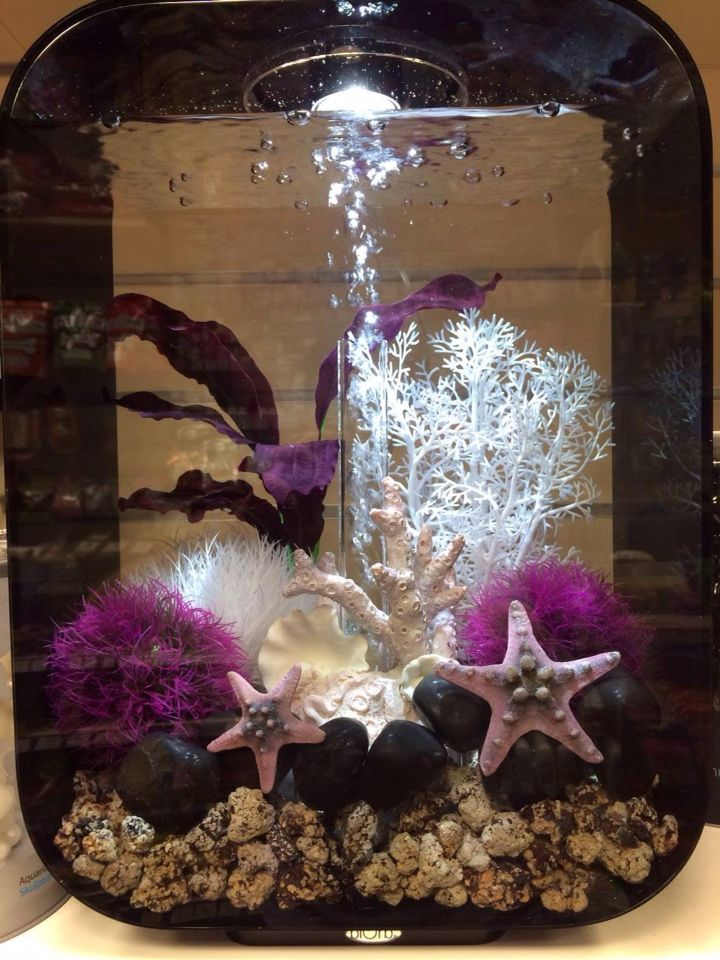 89 best images about fish tanks decor on pinterest for Cute fish tanks
