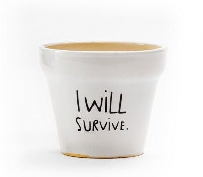 """I will survive"" plant pot."