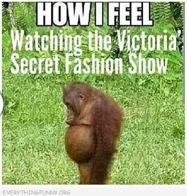 Victoria's Secret Fashion Show....how I feel.