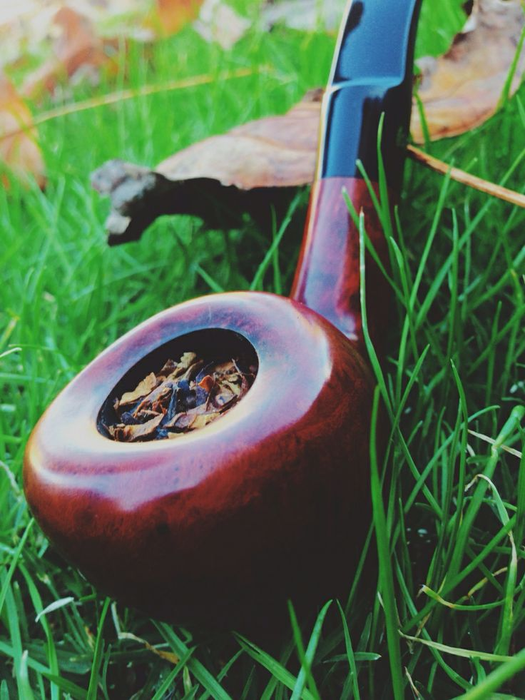 A smoke on the green, Mac Baren Scottish Blend Mixture in a Stanwell Featherweight.